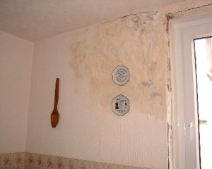 Penetrating Damp | How to Tell If You Have a Damp Problem